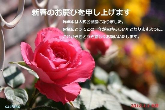 IMG_6626 - コピー.JPG
